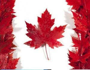 Apprendre l'anglais au CANADA – le 2ème plus grand pays du monde