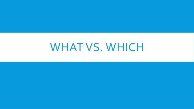 Comprendre la différence entre What et Which